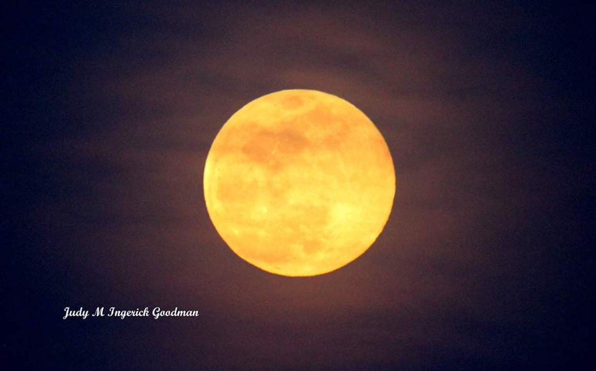 Worm Moon in March (photo)