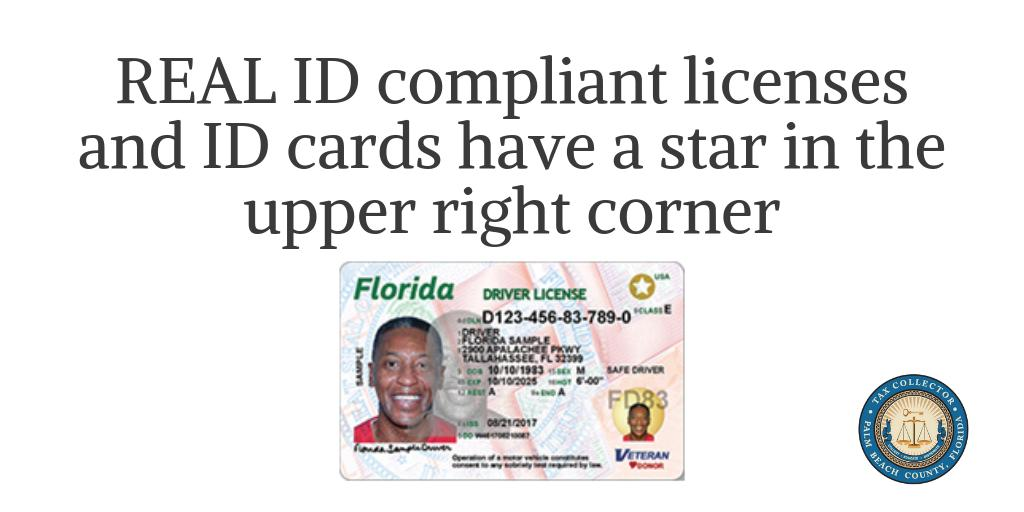 driver licence renewal florida appointment