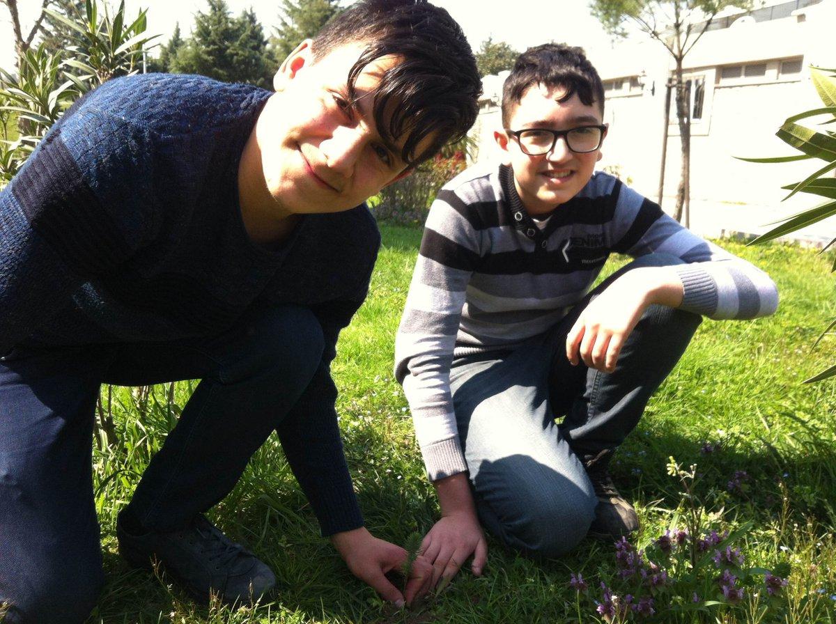 """İstanbul İl Milli Eğitim Müdürlüğümüzün uhdesinde yürütülen """"Ağaçların Adları İstanbul"""" projesi kapsamında okulumuz bahçesindeki uygun bir alana """"Fıstık Çamı"""" ağacının dikimini öğrencilerimizle birlikte gerçekleştirdik. @Istanbul_ILMEM  @MemBayrampasa #AğaclarınAdlarıİstanbul"""