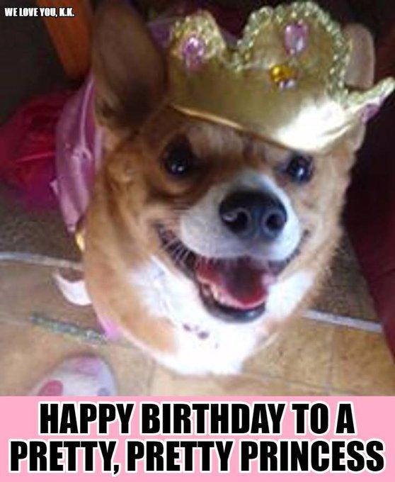 Happy Birthday to Nancy Pelosi. From me and my prissy corgi.