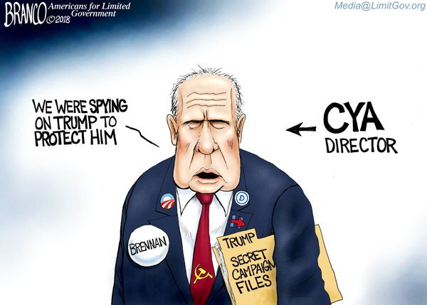 Image result for branco cartoons big media accountability