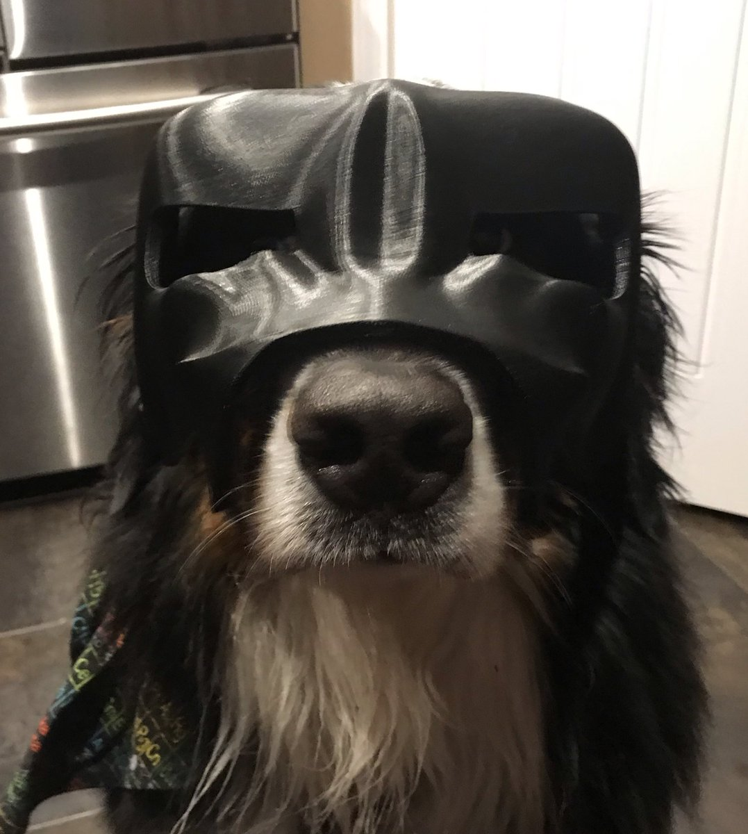 Bunsen And Beaker On Twitter My Dad Is 3 D Printing Me An Entire Dog Armour Set What Do You Think Of It So Far He Can Add Some Accessories To The Helmet Pets costume captain marvel flerken cloak warm cute pet costume for cats small dogs. bunsen and beaker on twitter my dad