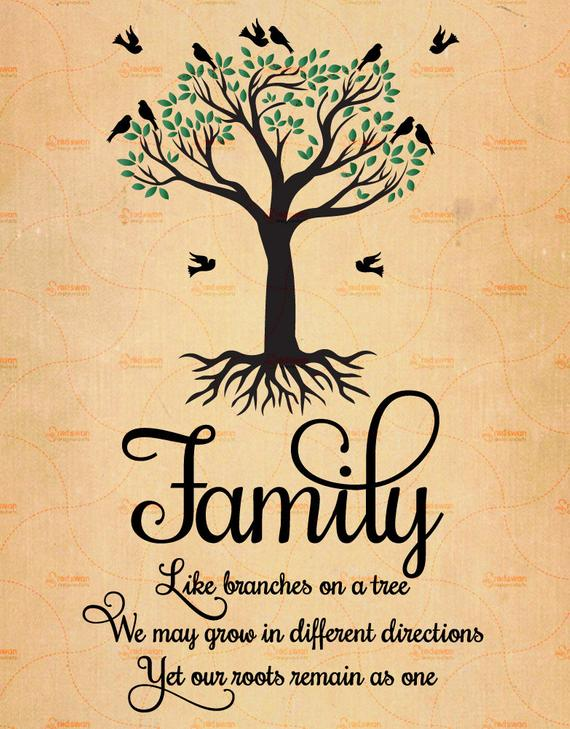 Inspirational Quotes On Twitter Family Like Branches On A Tree We