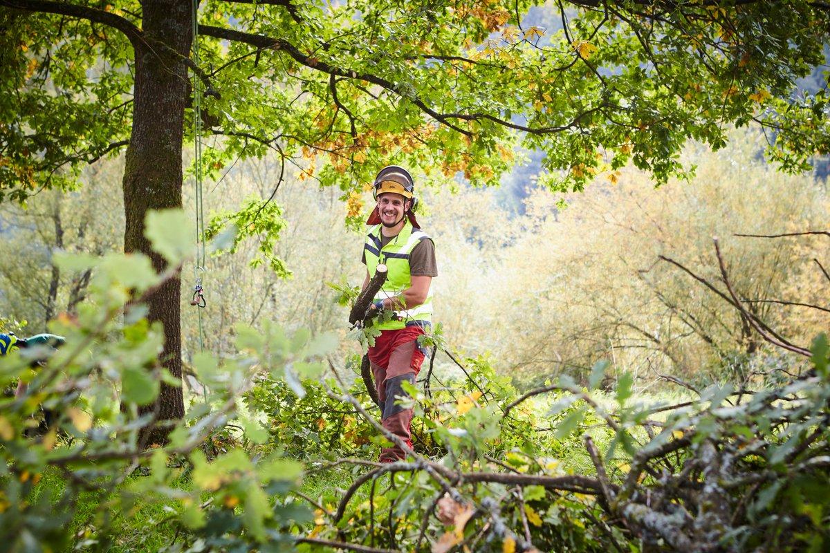 Kletterausrüstung Baumpflege : Baumpfleger tagged tweets and downloader twipu