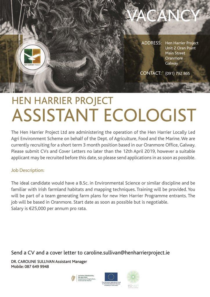Hen Harrier Project (@HenHarrierProj) | Twitter