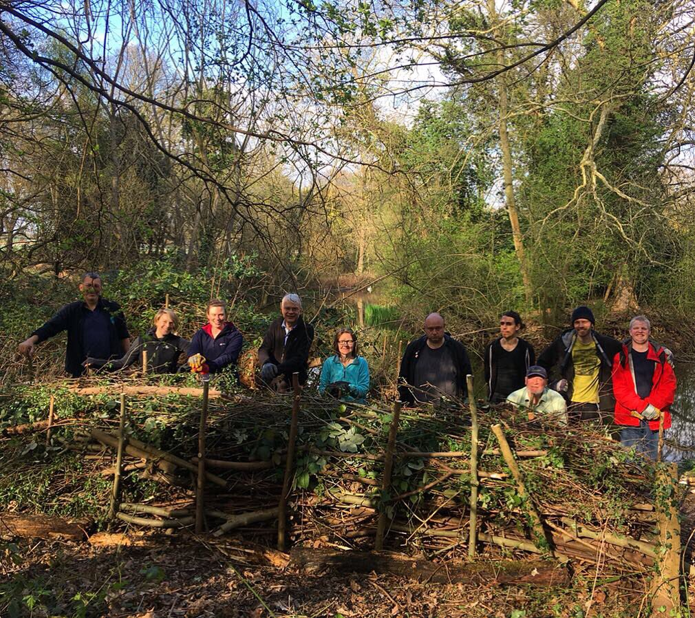 We've had a wonderful day working at @Gunnersbury1 around the Potomac Pond! We've been removing Snowberry and Bamboo, opening their paths, litter picking and building a magnificent dead hedge! We'll be back again tomorrow with plenty more to do so be sure to come along and join!