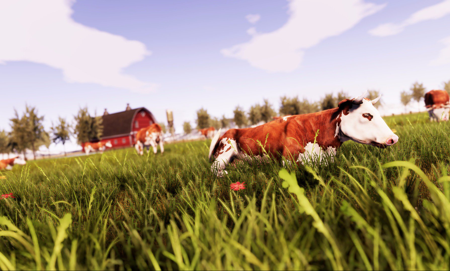 кузьминках масштабно красивые фермерские хозяйства фото фото разные