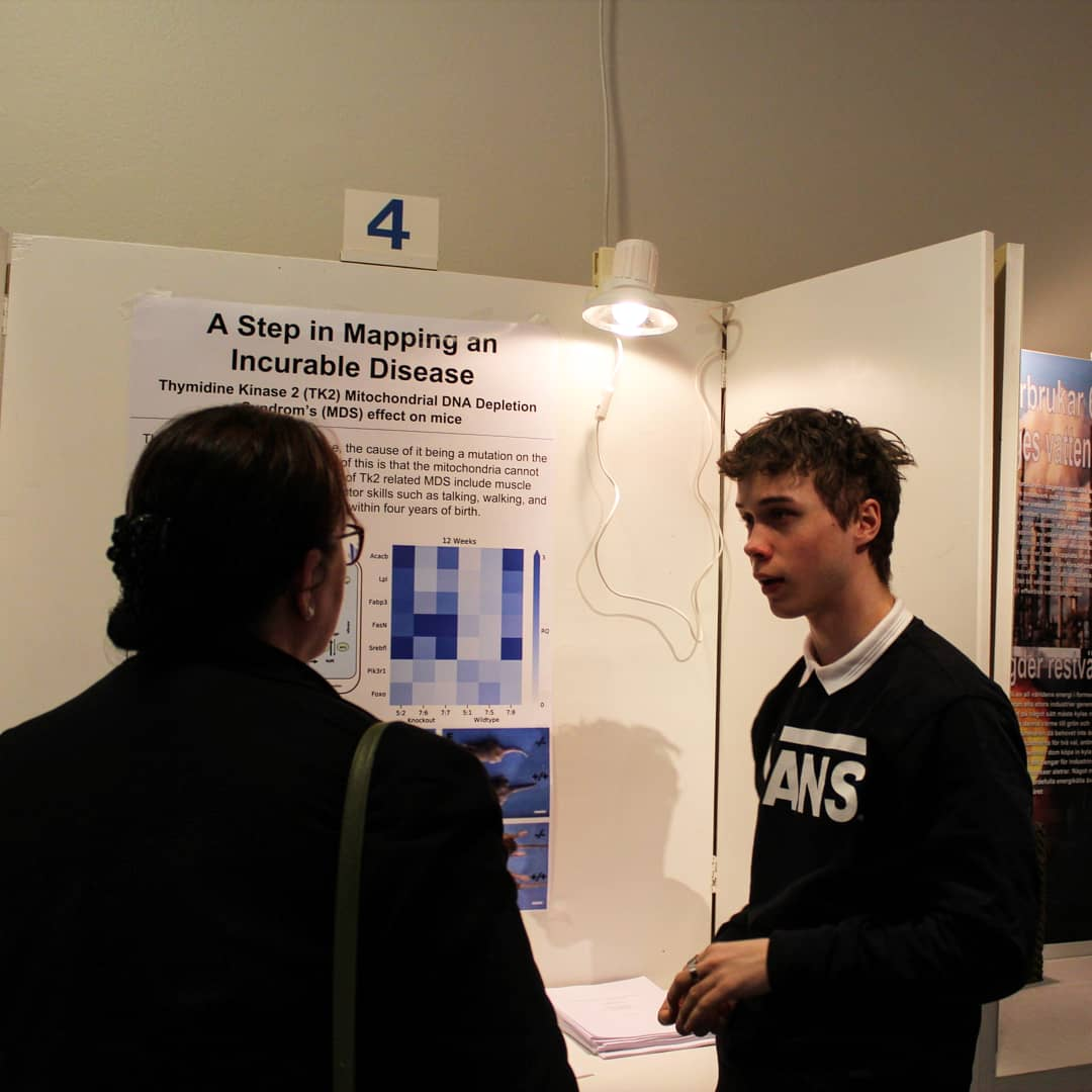 official photos 69a2a 977bc Nu är vi officiellt igång med finalveckan, där finalisterna bland annat har  fått möjlighet till att presentera sina projekt för besökare på Tekniska ...
