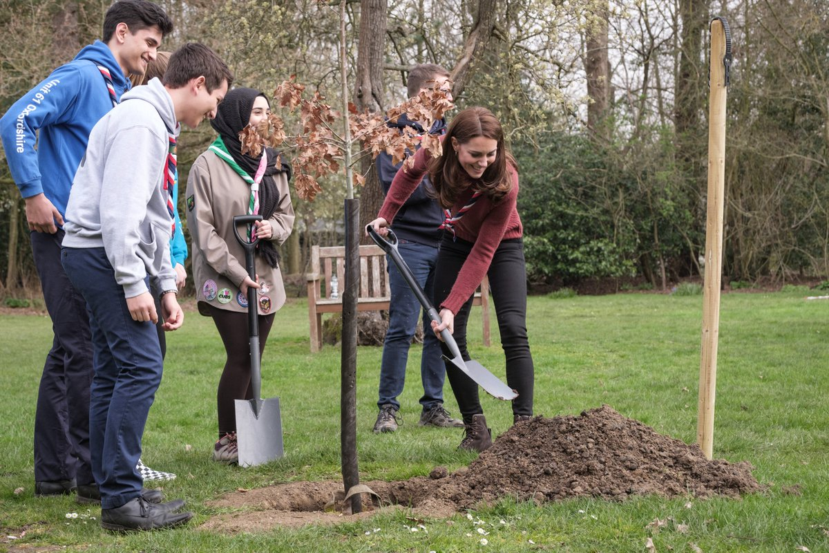 Image result for kate plants tree at scout headquarters