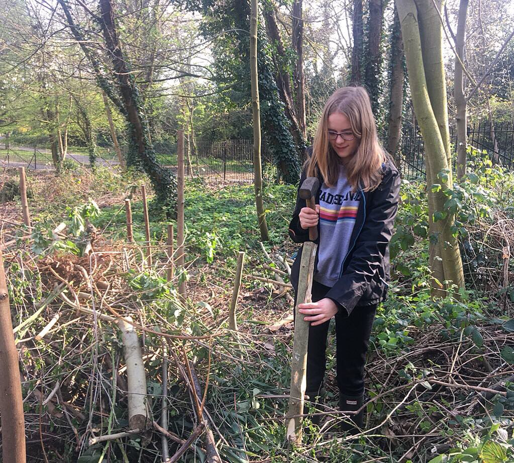 What a beautiful day to be back at the Potomac Pond! Volunteering with TCV is a great way to discover more about nature, gain experience in habitat management and learn new skills, as our newest volunteer Karensa discovered!  Thanks for having us @Gunnersbury1