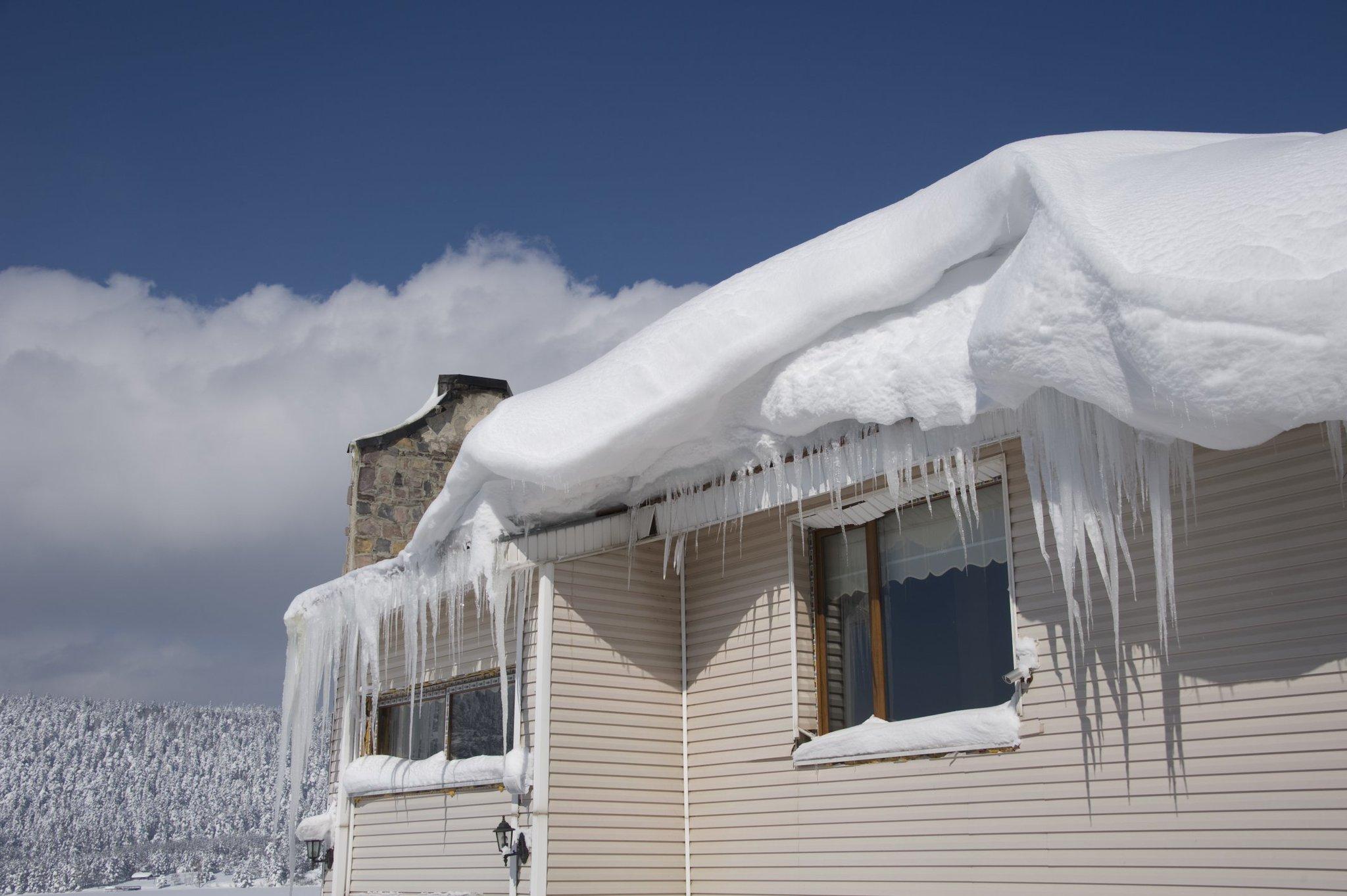 большущий медведь картинки крыши в снегу появится
