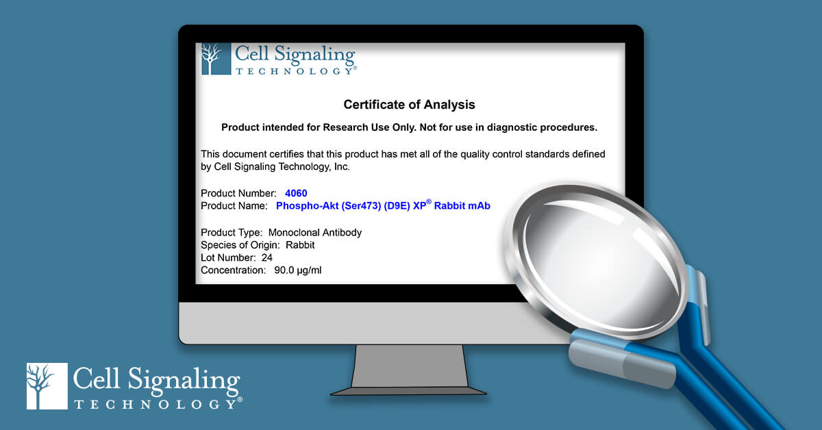😀CST Certificates of Analysis are online at https://hubs.ly/H0gNSs60 !