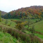 Join Alex on her walk on Saturday and maybe get a view of the beautiful Dillay Valley.