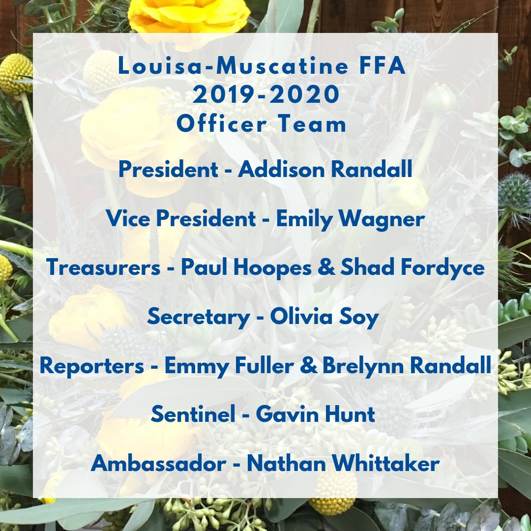 Muscatine Spring Cleanup 2020.Louisa Muscatine Ffa Lmffa ট ইট র