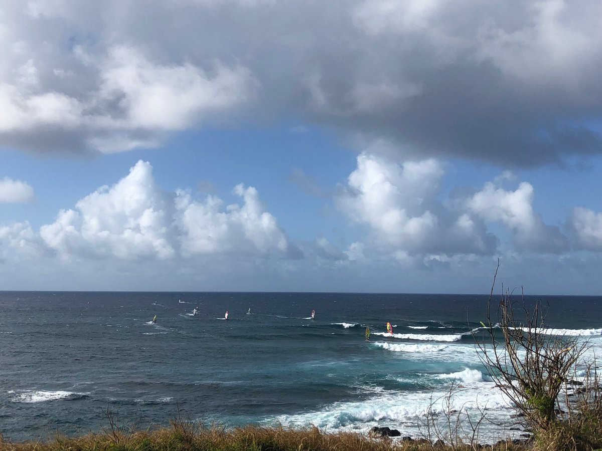 test Twitter Media - Windy at Ho'okipa; windsurfers delight. #cmweather #Maui #hookip #windsurf #delight https://t.co/q4WlM8yOaN