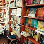 まるで図書館!父の書斎が入場料取れるレベル!