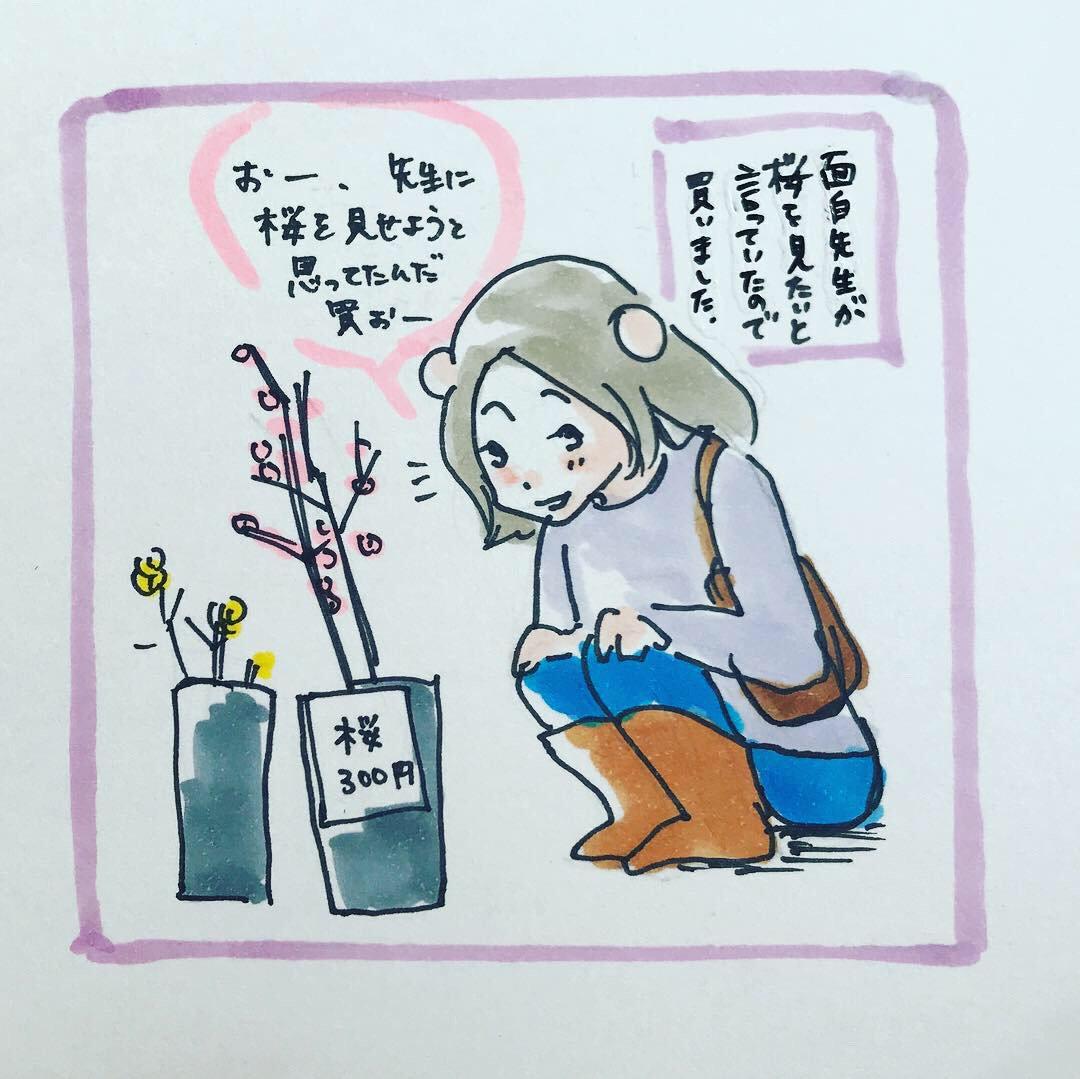 桜の季節もそろそろ終わりですね。オンライン英会話の先生に桜を見せたのは楽しい思い出です。ツイッターって写真4枚までしか掲載できないみたい!?さっきの漫画の一コマ目がアップできませんでした。