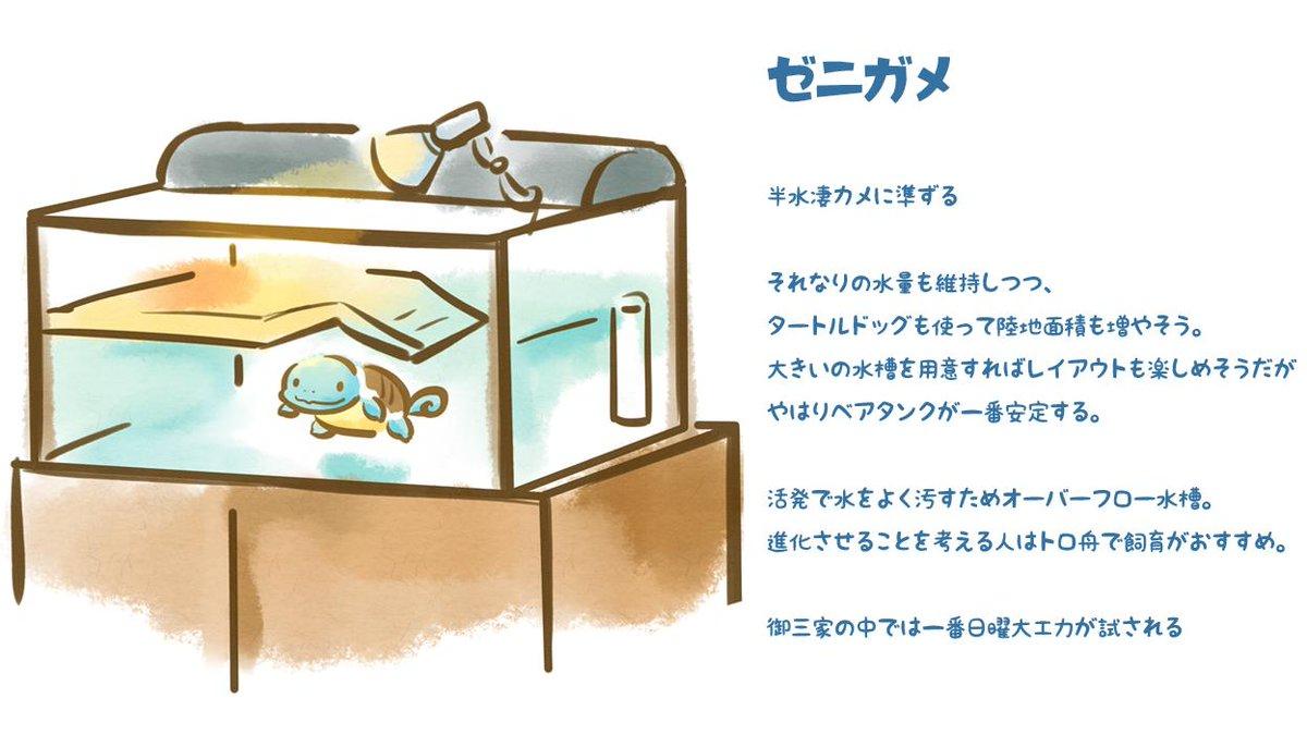 ツク之助◆デザフェスB419さんの投稿画像