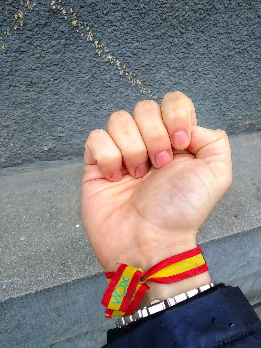 diente Infrarrojo Estar confundido  Joyería Pulsera Vox España Productos Handmade theaccountant.org.mt