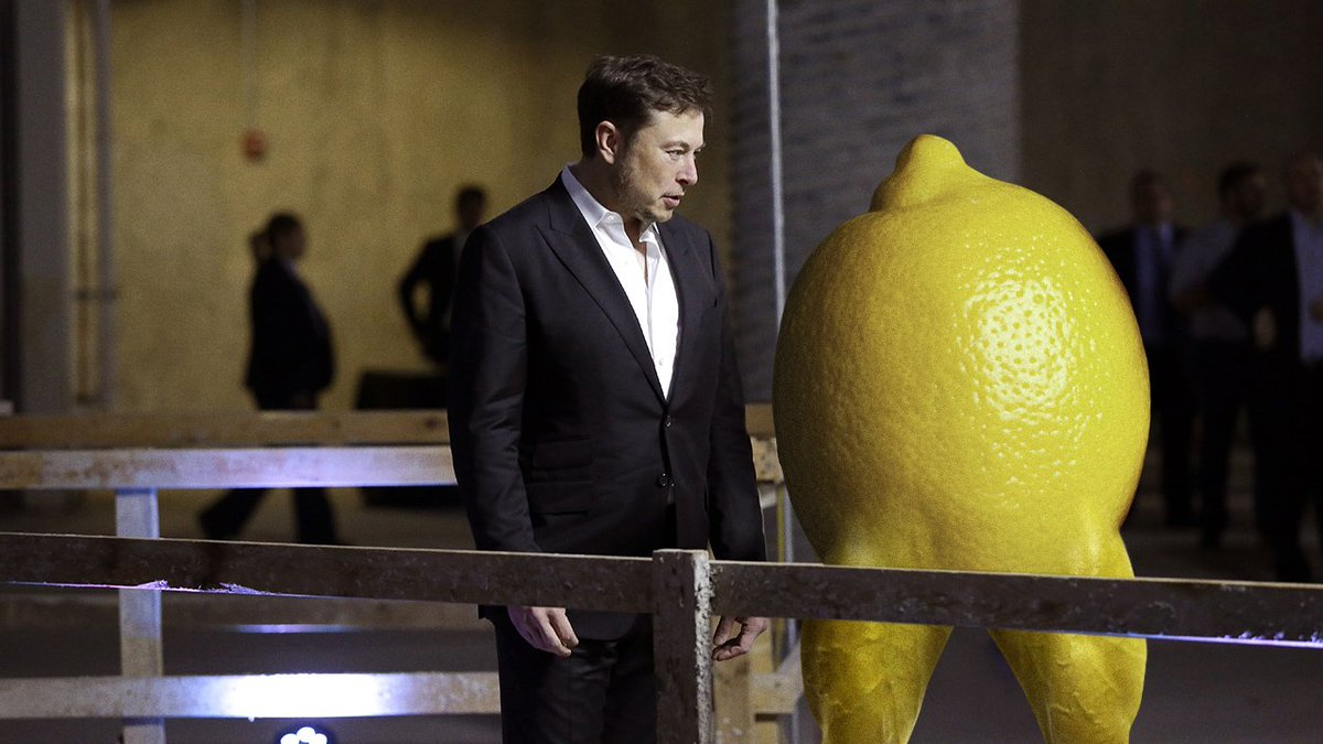 A Brilliant Innovator: Elon Musk Has Announced He Is Currently Developing A Lemon With Legs That Can Sprint To Hungry People All Over The World http://clckhl.co/9tHxrFK