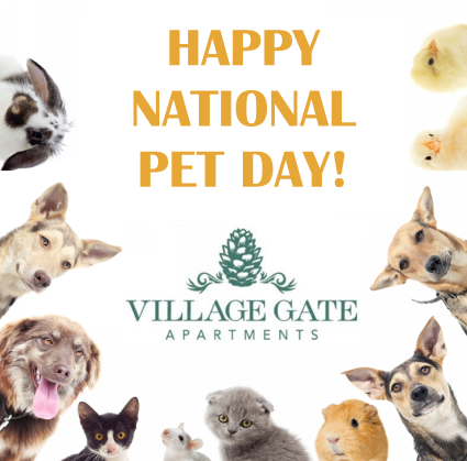 Happy National Pet Day-Show us your pets! #NationalPetDay #VillageGateApartments #Village #Gate #Fayetteville #FayettevilleNC #Apartments #Apartmentliving #FayettevilleApartments #ApartmentsNC #CapeFearValley #CafeFearNC #Cape #Fear #FortBraggApartments #FortBraggNC #Fort #Bragg