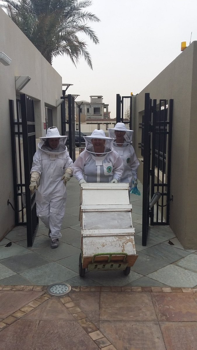 Welcoming the #bees to @ASDubaiNews today! Looking forward to some great hands-on learning and some super #honey too! Thank you @ZSP_EN and @beekeepersofUAE! #grade2 @TeacherKMulry #zayedsustainabilityprize
