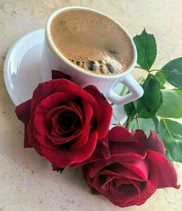 Картинка с добрым утром розы и кофе