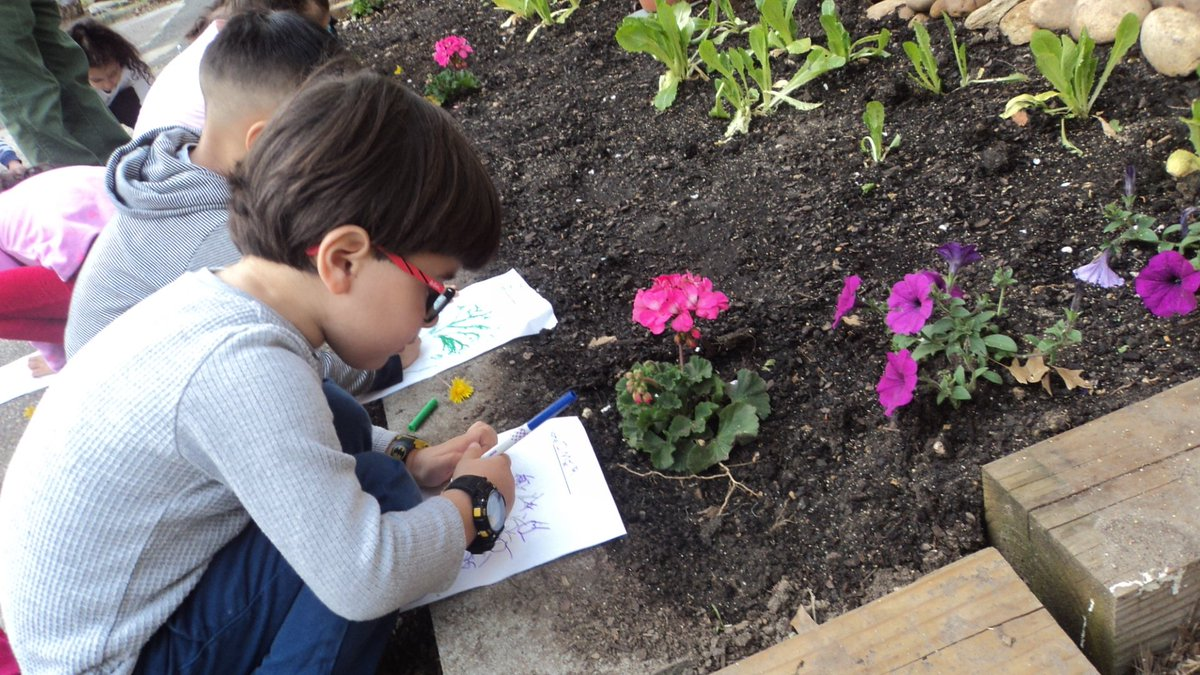 Preks are learning about parts of a plant as a part of spring expedition. We enjoyed looking at stems, leaves and flowers in different shapes and colors around school yard. <a target='_blank' href='http://twitter.com/CampbellAPS'>@CampbellAPS</a> <a target='_blank' href='http://twitter.com/CampbellOutside'>@CampbellOutside</a> <a target='_blank' href='http://twitter.com/APS_EarlyChild'>@APS_EarlyChild</a> <a target='_blank' href='https://t.co/7AvkuBi4JV'>https://t.co/7AvkuBi4JV</a>