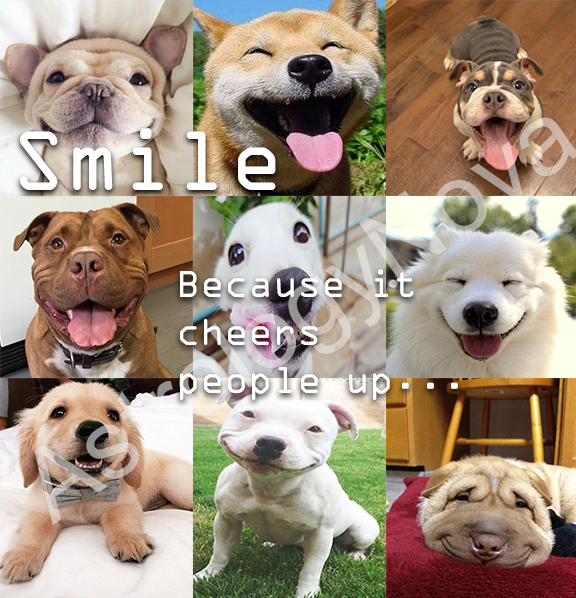 There is so much to smile about! Pass it on! #smile #happy #astrology #signs