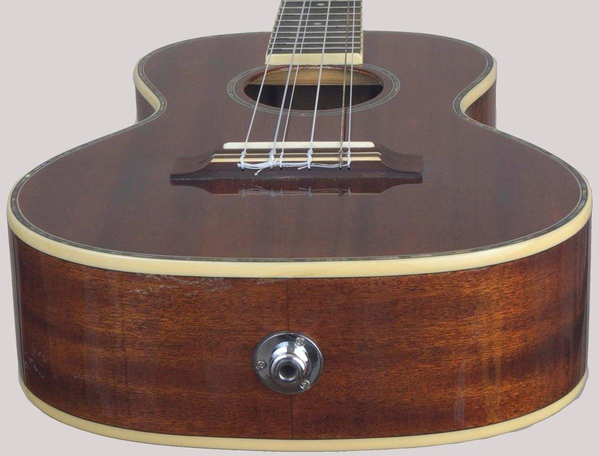 Ashbury Lili u 6 string ukulele with pickup