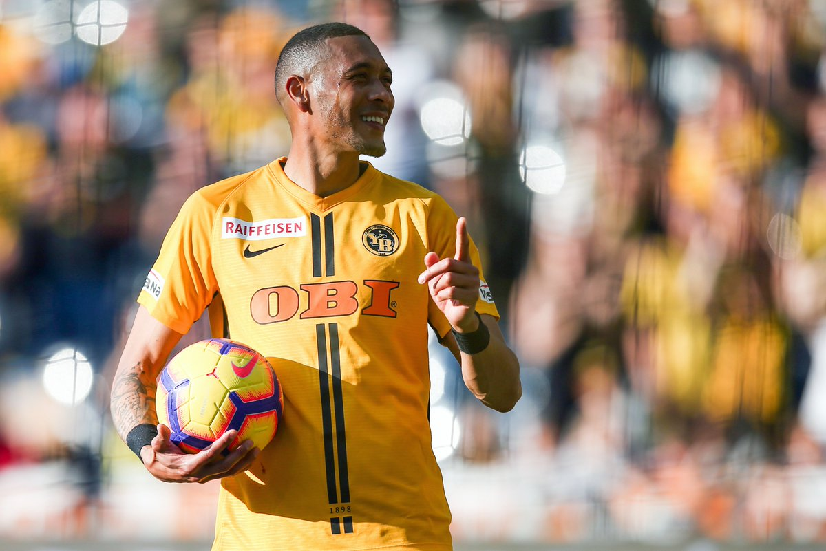 home  bsc young boys  offizielle internetseite