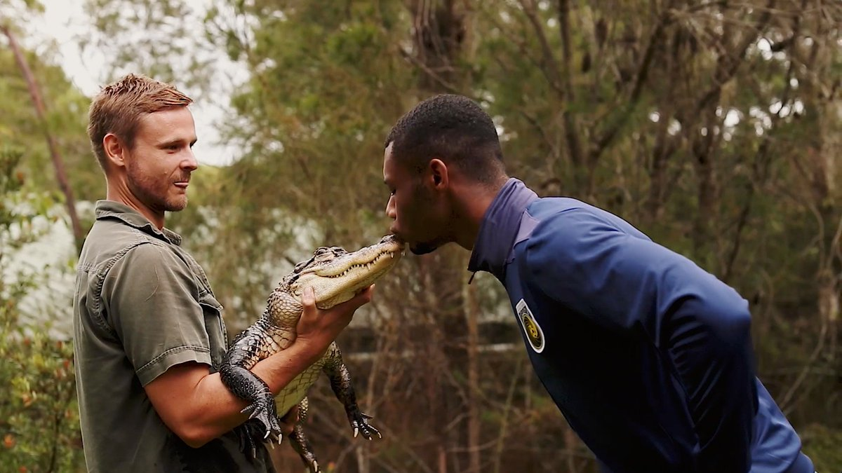 Only in Australia... 😅🐊  @samgraham1221 & @stephenmallon07 from @SUFC_tweets were game enough to kiss a croc, but it was a bird that gave them the biggest scare!   Thanks to Zookeeper Dan for treating the boys to an adventure at the @austreptilepark. #CCMFC #ALeague #SUFC