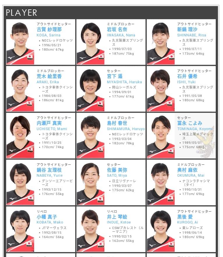 バレー 2019 メンバー 全日本 女子