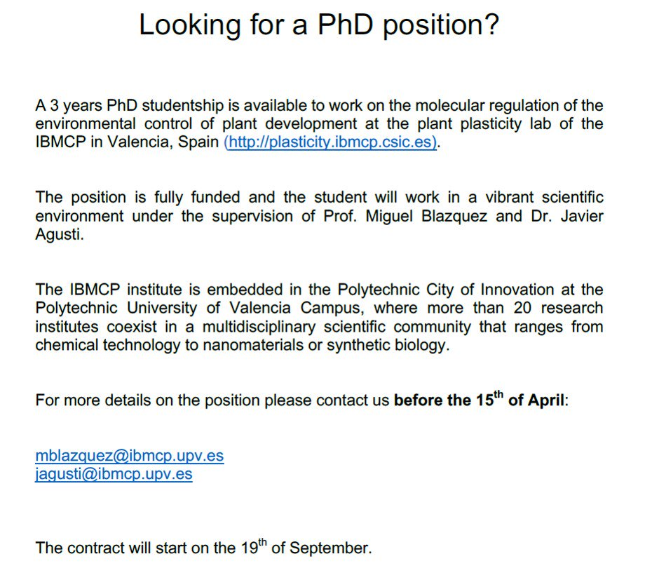 3-year fully funded PhD position in the lab of Miguel Blazquez and Javier Agusti at @IBMCP  Requirement: degree studied outside of Spain, contact them before 15th of April #plant #vascularbiology #scicareer #PhD