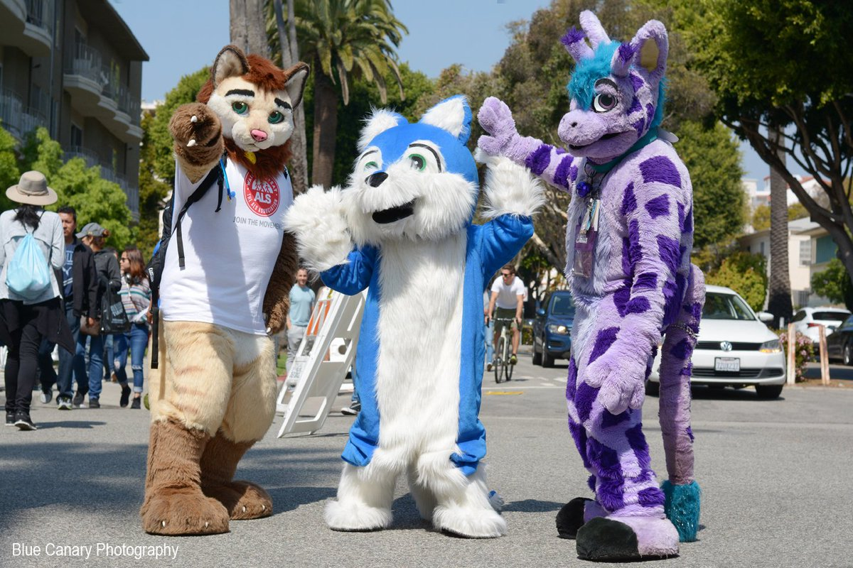 Some of the fursuiters at the LA Marathon. #TeamTonyALS #ALSAOC #TeamALS (2/2) @dogbomb1 @als_oc @ALSAOCC @ManedCalico @Zarafagiraffe (special appearance by the lovely blue Spades and her Mom...meeting you both was awesome!)