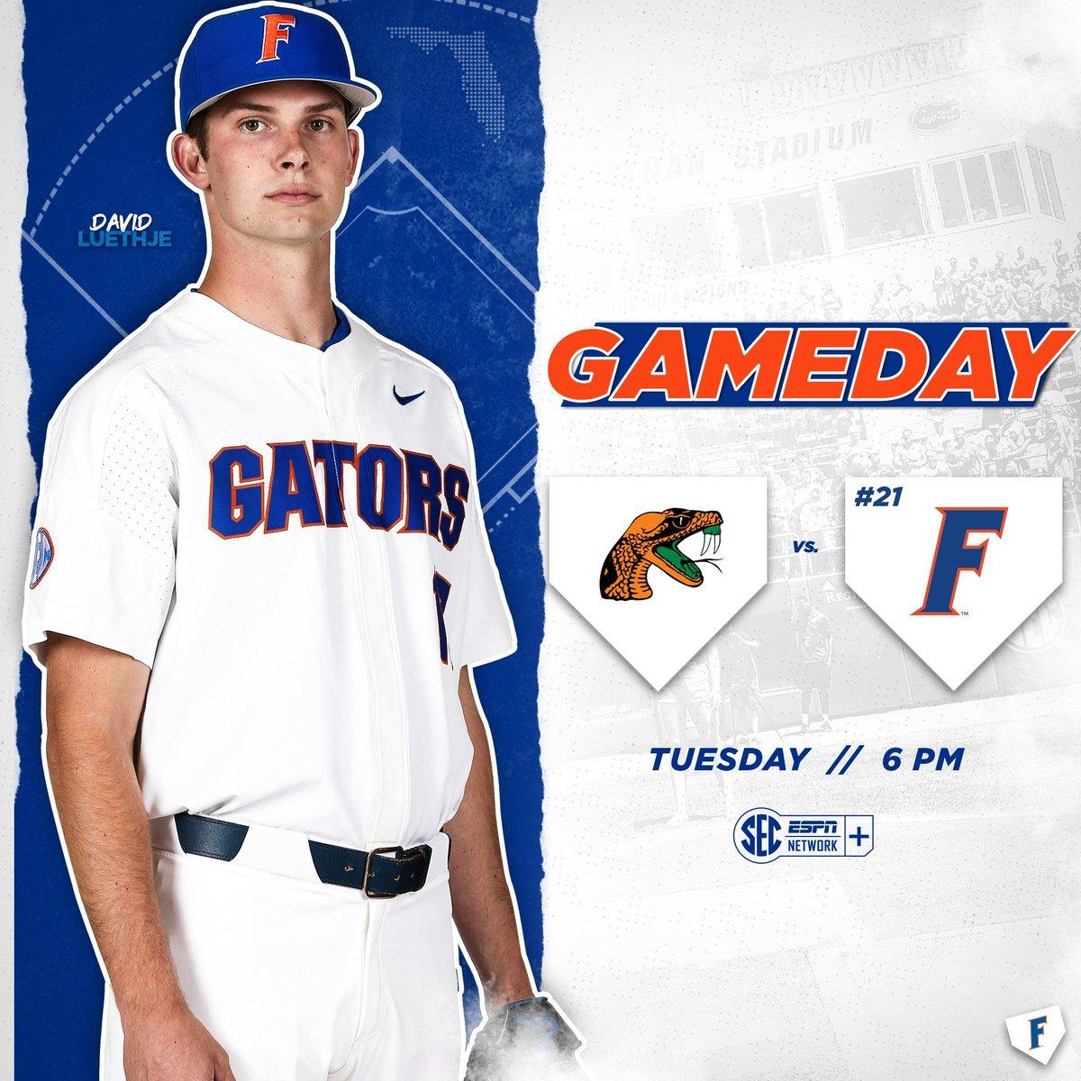 136746497b Florida Gators Baseball ( GatorsBB)