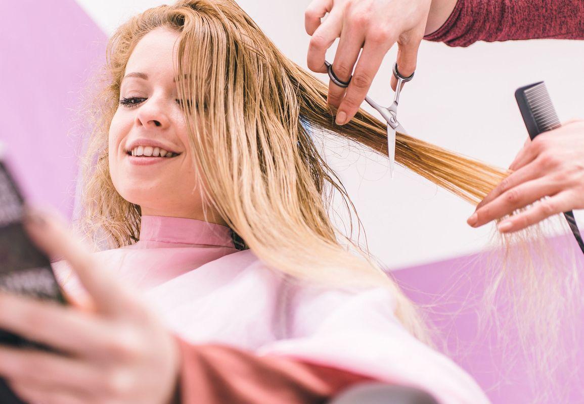 порода собаки картинки про услуги парикмахера предполагают