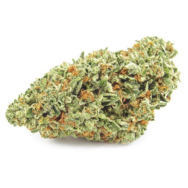 FIRE OG Fire OG, the hybrid with between 18% and 24% of THC (tetrahydrocannabinol) and 0.05% - .03% of CBD. It is best for treating Pain, Muscle Tension and Insomnia.  For more detail visit at http://www.eshopmarijuana.com.  #Cannabis #WeedLover #MedicalMarijuana #CBD #marijuananews