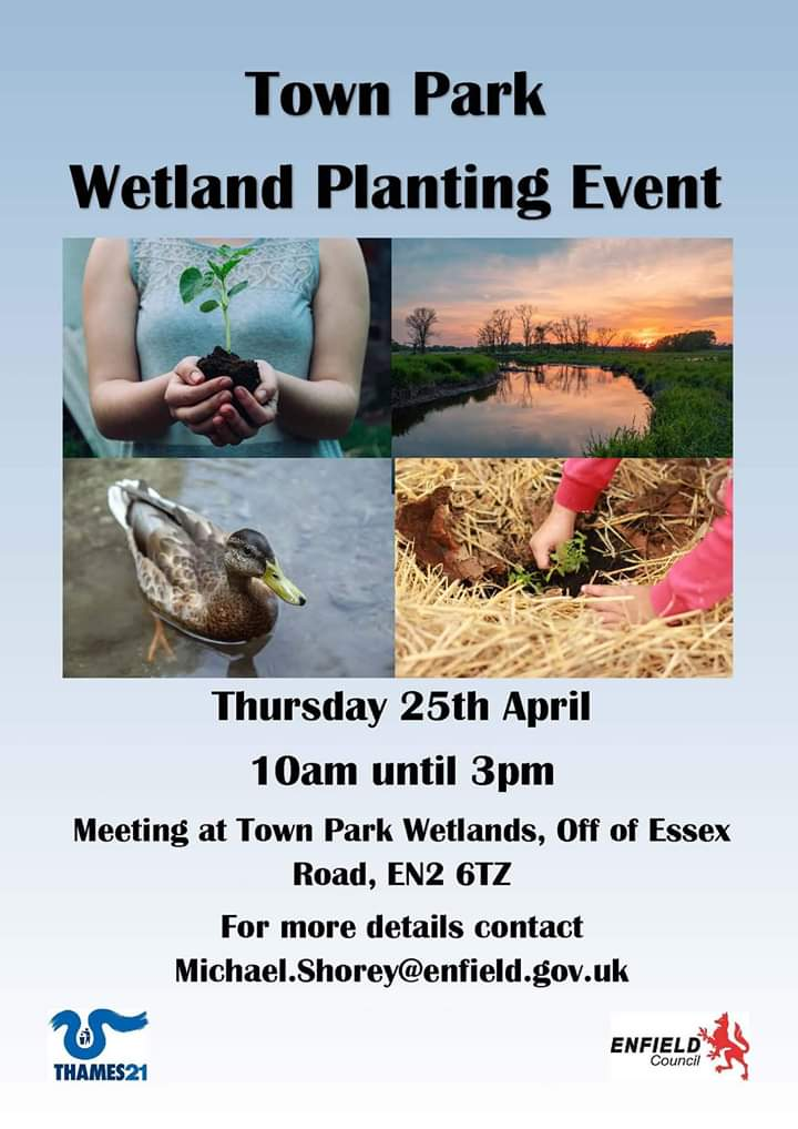 poster or flyer advertising event Town Park Wetlands planting