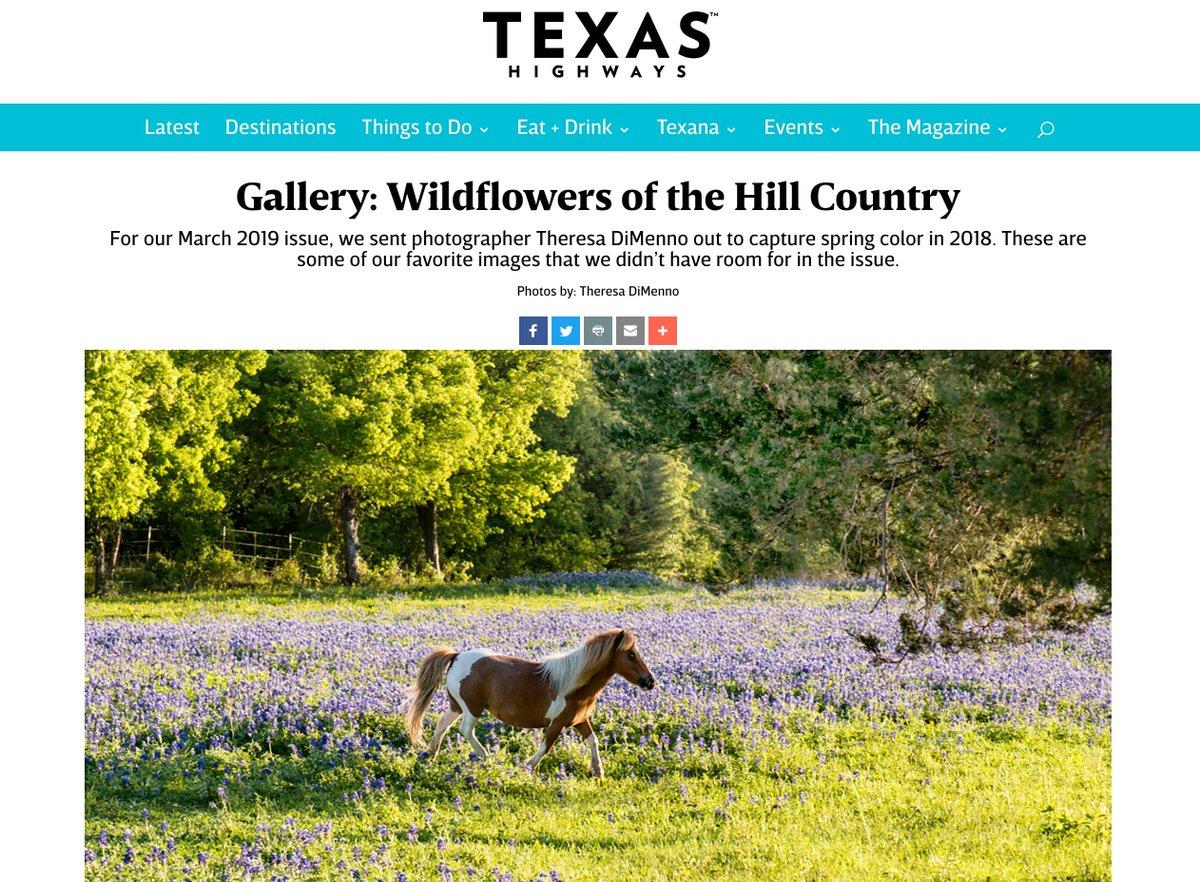 Just in case you need a mid-week pick-me-up: https://texashighways.com/wildflowers/gallery-wildflowers-of-the-hill-country/?fbclid=IwAR0IiaJ9mKdth_03elHKcgG0sxg9DkCDm4Cqtfk687r7-PS4HcAyssmnnAM…