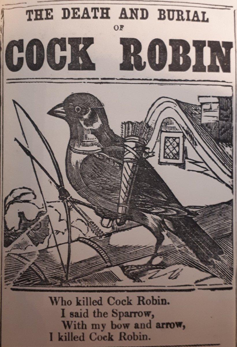 Who killed cock robin — photo 10