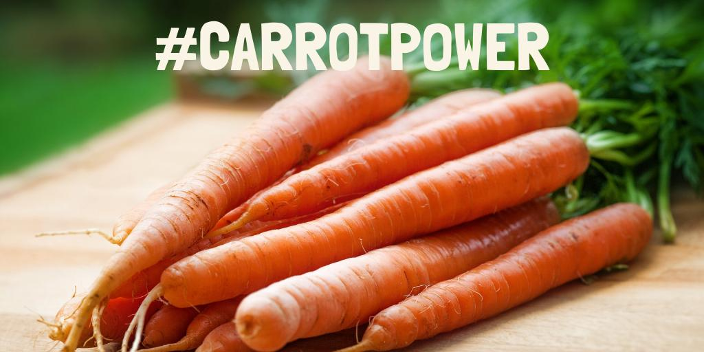 The humble carrot is one of the heroes of our #plantbased products, and we're celebrating these orange sticks of goodness on #internationalcarrotday!  We use carrots to provide: 1⃣ Succulence 2⃣ Additional fibre 3⃣ Natural colouring Find out more:  http://www.meatlessfarm.com/ingredients/