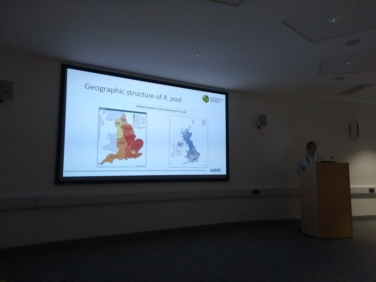 Great to hear about how @RamiroHojas is sequencing historical samples to uncover the genetic structure and dispersal of cereal aphids @Rothamsted_RIS #AphidSIG19