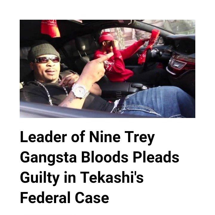 Nine trey bloods General Mel Matrix pleads guilty to all
