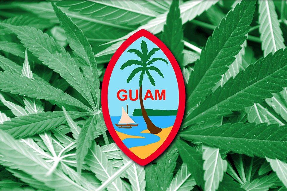 关岛总督签署大麻合法化法案:关岛将成年人使用大麻合法化