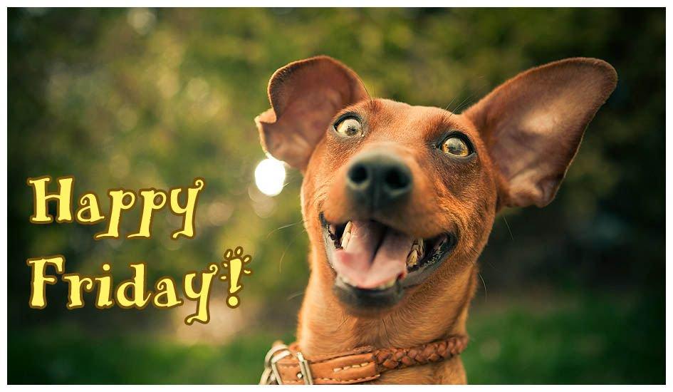 Happy Friday Everyone - Enjoy the Weekend! #HappyFriday #VillageGateApartments #Village #Gate #Fayetteville #FayettevilleNC #Apartments #Apartmentliving #FayettevilleApartments #ApartmentsNC #CapeFearValley #CafeFearNC #Cape #Fear #FortBraggApartments #FortBraggNC #Fort #Bragg
