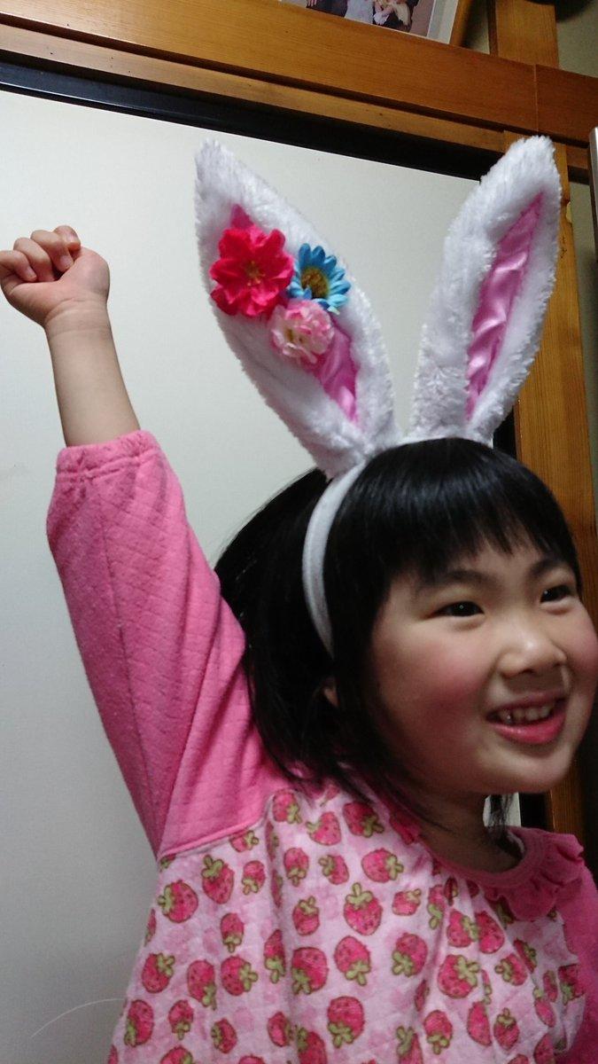 test ツイッターメディア - ダイソーで売ってたウサギの耳カチューシャ、可愛い!これで100円はうれしいね🎵 #ダイソー #うさみみ https://t.co/PWTlOPY1wu