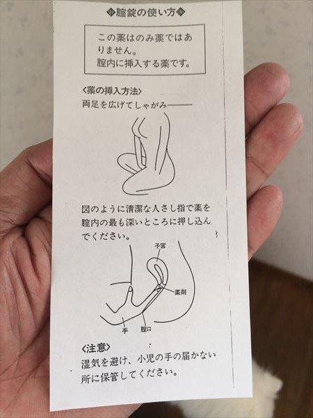 フラジール 膣 錠 フラジール腟錠250mg - 添付文書