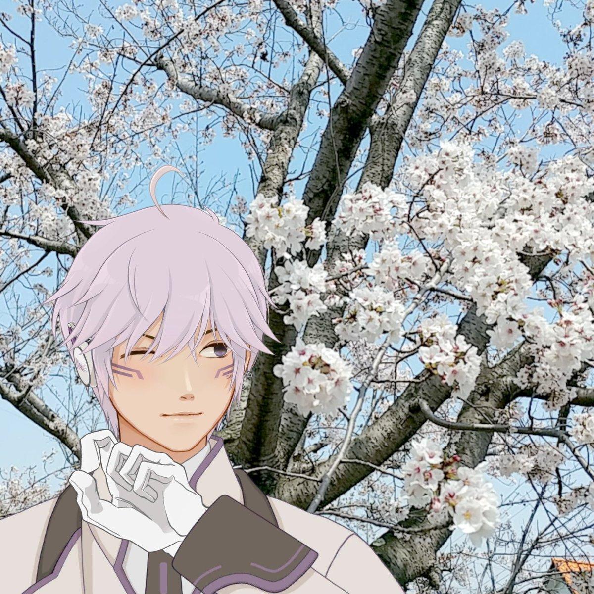 ごろちゃんも勿論。蒲公英、クローバー、桜の花弁と春の詰め合わせみたいなとこ見つけたから撮ったけど花弁がイマイチ映えない土色。。。3枚目はなんかかぐわしげなはちw匂いを感じてる気分を演出してくれてるwwwなんか歳下の幼馴染が就職決まったから写真撮ってやろうみたいな図だなスーツ。