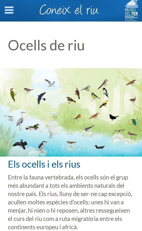 twitter पर museu del ter hola ja